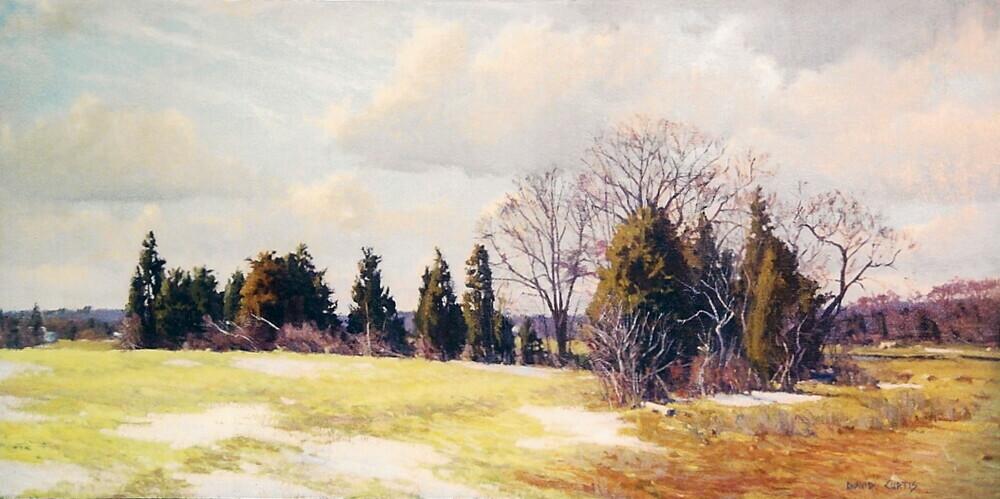 david p  curtis - landscapes